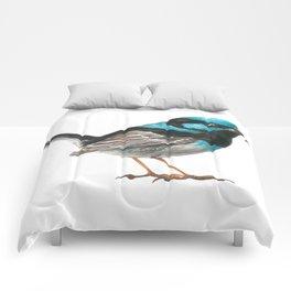 Fairy wren bird Comforters