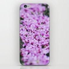 Sweet memories of Spring iPhone & iPod Skin