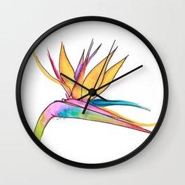 Oiseau du paradis Wall Clock