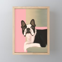 Boston terrier Framed Mini Art Print