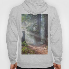 First Light Hoody
