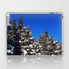 Winter Greens and Blue Sky Laptop & iPad Skin