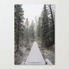 Silverthorne, CO Canvas Print