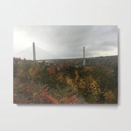 Fog in Maine Metal Print