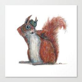 Squirrels' hat Canvas Print