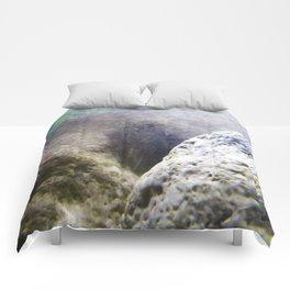 Aqua 2 Comforters