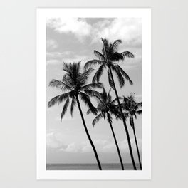 Tropical Darkroom #145 Art Print