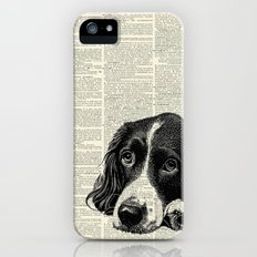 Vintage Springer Spaniel iPhone (5, 5s) Slim Case