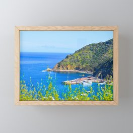 Catalina Scenic Tour Framed Mini Art Print