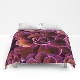 PURPLE TINGED JADE CACTI SUCCULENTS Comforters