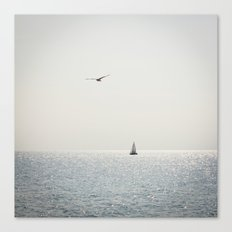 Fly over the sea Canvas Print