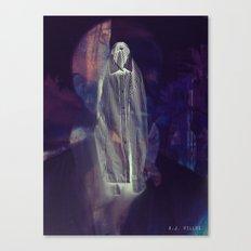 Flay Canvas Print