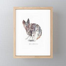 Lepus Californicus Framed Mini Art Print