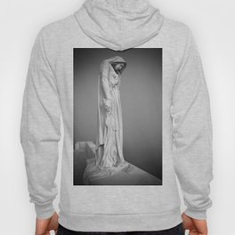 Statue in the mist Hoody
