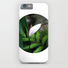 Pink Anthurium iPhone 6s Slim Case
