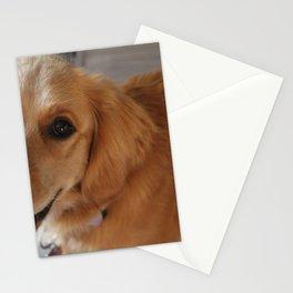 Golden Retriever Portrait Stationery Cards