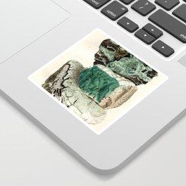 Vintage Mineralogy Illustration Sticker