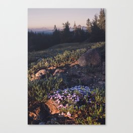 Wildflowers at Dawn - Nature Photography Canvas Print