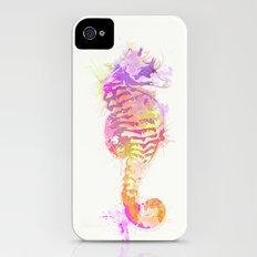 Seahorse iPhone (4, 4s) Slim Case