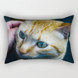 Cat in Kyoto Rectangular Pillow