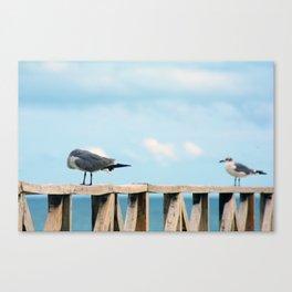 Bird collection _02 Canvas Print