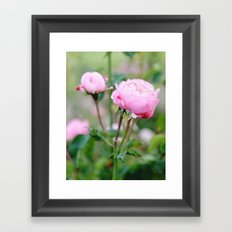 Bloom where you're planted Framed Art Print