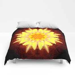 Let's walk down Memory Lane... Comforters