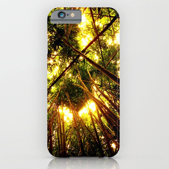 Bamboo Forest iPhone & iPod Case
