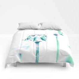 Delusion Comforters