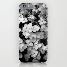 Tiny White Hydrangeas (In Black and White) iPhone 6s Slim Case