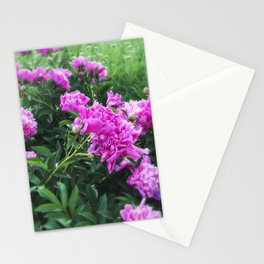 Pink Peonies in Garden Tilt Shift Stationery Cards