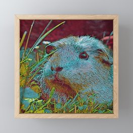 Popular Animals - Guinea Pig 2 Framed Mini Art Print