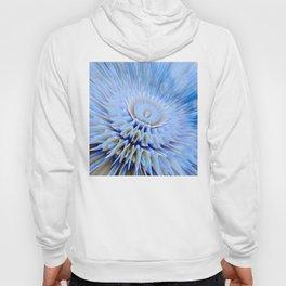 Blue 3D essence of a mandala Hoody