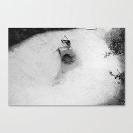 Palisades Bowl 1 Canvas Print