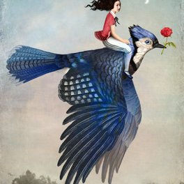 Framed Art Print - Time to Fly - Christian Schloe