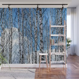 Birch Trees. Early Spring Wall Mural