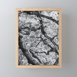 Falling into Spring bw Framed Mini Art Print