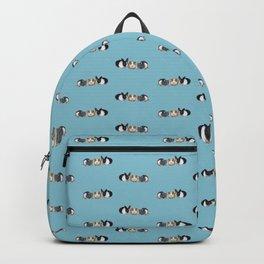 Dwarf rabbit, guinea pig and rat Backpack