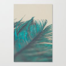 Turquoise Feather Abstract Canvas Print