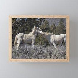 Wild Horses with Playful Spirits No 7 Framed Mini Art Print