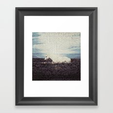 Horse by the Sea Framed Art Print