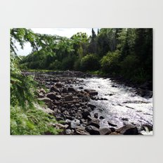 whitewater Canvas Print
