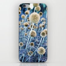 WILD THISTLE iPhone & iPod Skin