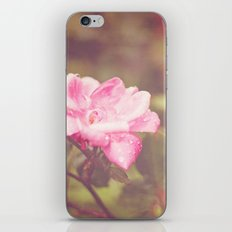 A Rose By Any Other Name... iPhone & iPod Skin