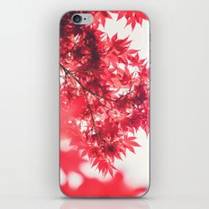 Autumn 55454 iPhone & iPod Skin