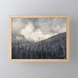 Steamy Forest -  Yellowstone National Park Framed Mini Art Print