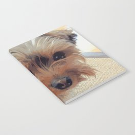 Yorkie | Dogs | Terrier | Pets | Humor | What!?! (with text) Notebook