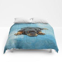Dobermann Puppy - Doberman Pinscher Comforters