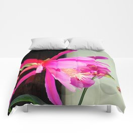 Love At First Bite Comforters