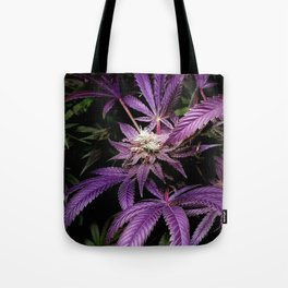 Purrple Tote Bag